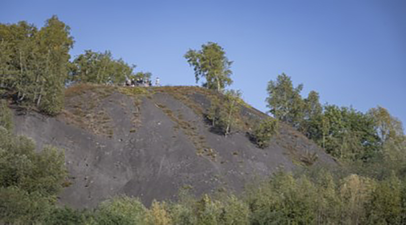 mijnsteenberg ONIV